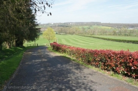 STUD FARM -  68 HA - CLOSE TO HARAS DU PIN